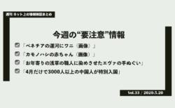 《週刊》ネット上の情報検証まとめ(Vol.33/2020.5.20)
