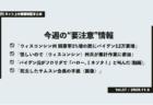 《週刊》ネット上の情報検証まとめ〜米大統領選 特別編(Vol.58/2020.11.13)